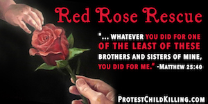 Red Rose Rescue